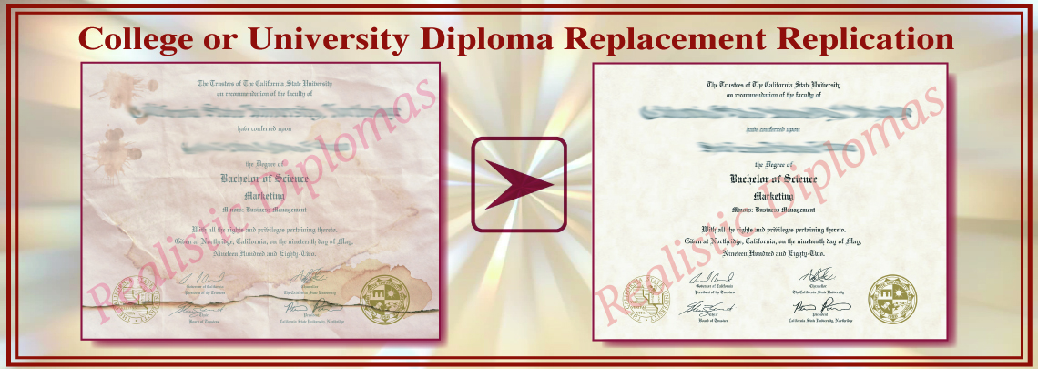 Replica Replacement Fake Diploma